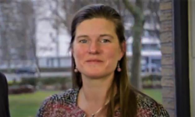 Stad Antwerpen biedt VME advies en subsidie voor Beter Renoveren